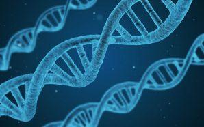 Jaki choroby są ukryte w naszych genach?