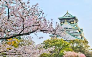 Zegarki japońskie, czyli jakość i dyscyplina z Dalekiego Wschodu